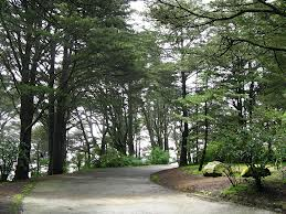 Golden Gate Heights Park, circular drive at the top
