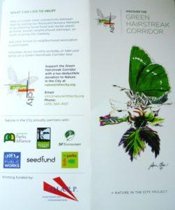 natureinthecitypamphlet